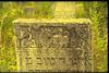 New Jewish cemetery in Teleneşti (Teleneshty) Decorative panel of a tombstone – הספרייה הלאומית