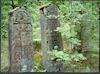 Jewish cemetery in Lenin – הספרייה הלאומית