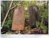 Jewish cemetery in Krevo (Krewo) – הספרייה הלאומית