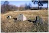 Jewish cemetery in Dukora – הספרייה הלאומית