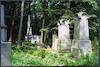 Jewish Cemetery in Warsaw – הספרייה הלאומית