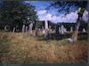 Jewish cemetery in Buteni – הספרייה הלאומית