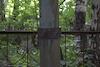 Jewish sector of the cemetery in Mariinsk – הספרייה הלאומית