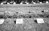 Cemetery near Dahau with graves of Jews but with a Christian Cross on the grave – הספרייה הלאומית