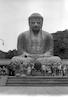 A huge statue of Budha – הספרייה הלאומית
