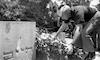 50 שנה לרצח ארלוזורוב.: – הספרייה הלאומית