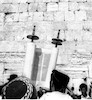 Orthodox Jews praying on the Tu'Bav at the Western Wall.: