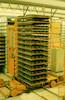 Cement factory in Natanya – הספרייה הלאומית