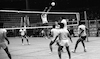 Championship game in volleyball by the IDF different units took place – הספרייה הלאומית