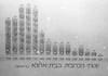 """דיאגרמות גידול זרעי כרובית ע""""י חיים פלדנר מבית אלפא – הספרייה הלאומית"""