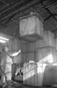 מפעל לשימורי זיתים – הספרייה הלאומית