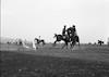 מרוץ סוסים – הספרייה הלאומית
