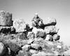 סיור ארכיאולוגי עם הארכיאולוג אהרוני – הספרייה הלאומית