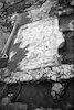 רצפת פסיפס יווני – הספרייה הלאומית
