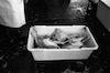 משחטת עוף איזורית – הספרייה הלאומית