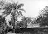 המושבה הגרמנית בחיפה – הספרייה הלאומית
