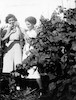 חנה ואתי בכרם, פרדס חנה 1940 – הספרייה הלאומית