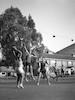משחק כדור סל בתי ספר תיכון בית אלפא-גן שמואל, בעז רוזנברג ויוסי מזור – הספרייה הלאומית