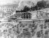 גת שמנים הר הזיתים ירושלים 1934 – הספרייה הלאומית