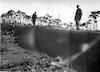 כהנוביץ ואליוביץ. החול שנערם בפרדס שפיה לאחר סופה 1934 – הספרייה הלאומית