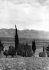 נוף העמק לרגלי כפר גלעדי והחרמון ברקע – הספרייה הלאומית
