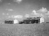 הקמת צריפים (דיר מנסור) – הספרייה הלאומית