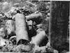 שרידי בית כנסת עתיק על הארבל – הספרייה הלאומית