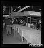 בית אריזה לפירות הדר, פרדס-סינדיקט, רחובות – הספרייה הלאומית