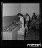 בית חרושת לשימורים, אשקלון – הספרייה הלאומית