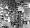 בסנדלריה – הספרייה הלאומית
