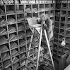 דואר נכנס – הספרייה הלאומית