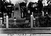 קבר אחים בפתח תקוה – הספרייה הלאומית