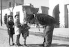 יעני עם ילדים בצפון אפריקה – הספרייה הלאומית