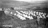 מחנה גדוד העבודה – הספרייה הלאומית