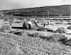 עירום חציר – הספרייה הלאומית