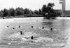 בריכת השחיה – הספרייה הלאומית