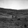 פינוי שדה מוקשים – הספרייה הלאומית