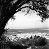 נמל חיפה – הספרייה הלאומית