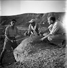 מאובנים במכתש רמון – הספרייה הלאומית