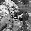 חיילי לגיון שנהרגו ליד ביתר – הספרייה הלאומית