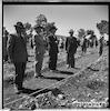 """נווה אילן, קק""""ל, 3/1951 (ליד אבו גוש), נטיעת יער – הספרייה הלאומית"""