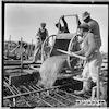 """בניית גדר, ואדי מוסררה, ת""""א, 1951 – הספרייה הלאומית"""