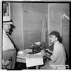 מפלסים, 1949 – הספרייה הלאומית